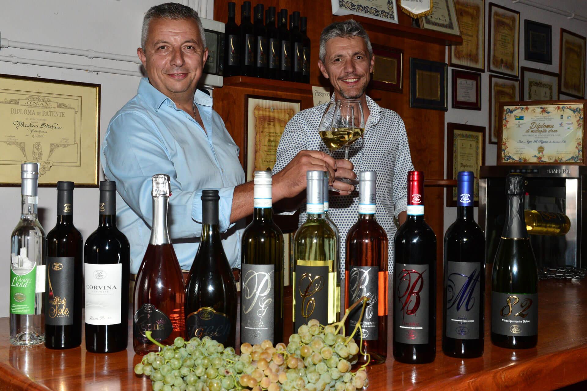 Degustazione vino Custoza